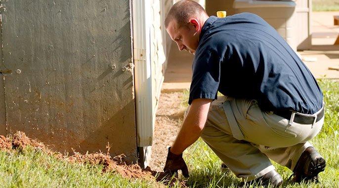 Termite-Control-Pest-Management