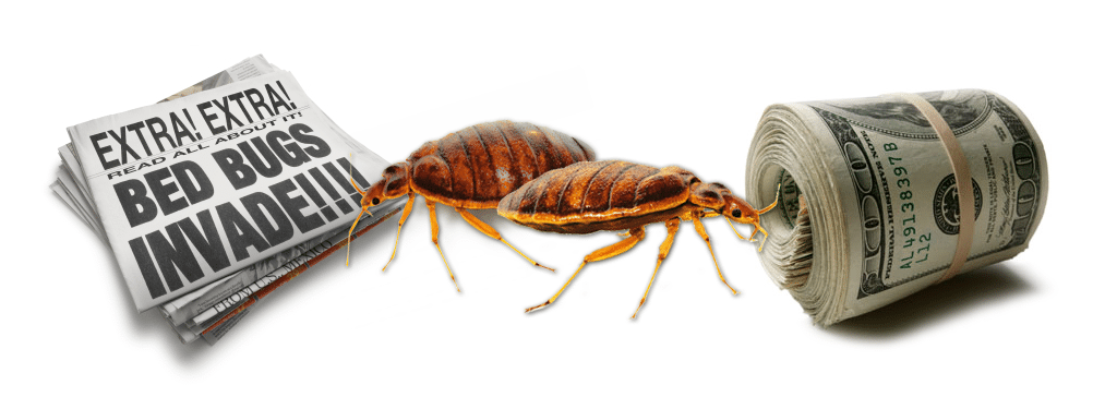 How Much Does It Cost To Treat Bed Bugs