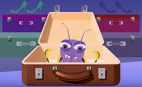 How do bed bugs travel?